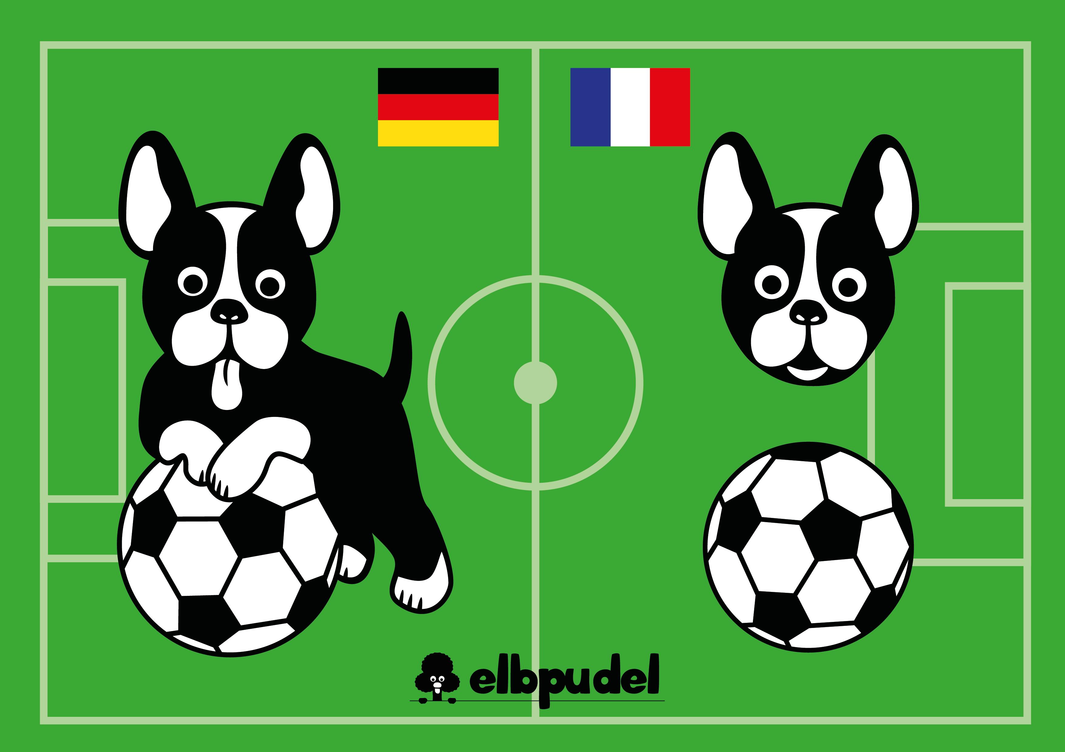 elbpudlFussballdoggeBanner